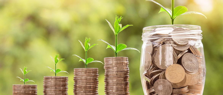 Fondo de Inversión